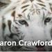 S Crawford <span>Bedford, 06/09/2014</span>